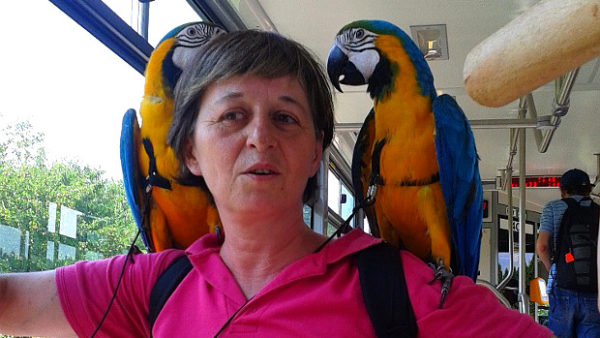 S papoušky v tramvaji: ostravské Zátiší ožilo setkáním chovatelek domácích mazlíčků