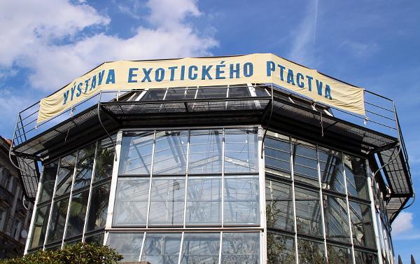 Na výstavu láká velký transparent, který je vidět už od tramvajové zastávky Botanická zahrada (Foto: Jan Potůček, Ararauna.cz)