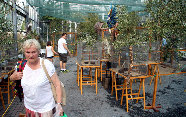 """Zájem o výstavu je i hodinu před """"zavíračkou"""" (Foto: Jan Potůček, Ararauna.cz)"""