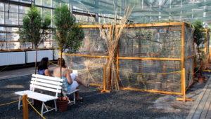 Botanická zahrada 2015