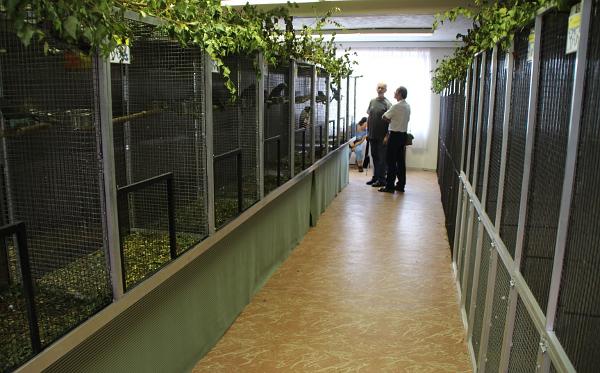 Vlevo sekce pro africké papoušky, vpravo pro jihoamerické (Foto: Jan Potůček, Ararauna.cz)