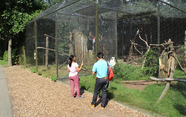 Denně navštíví Zoo Veldhoven přibližně 350 návštěvníků (Foto: Jan Potůček, Ararauna.cz)