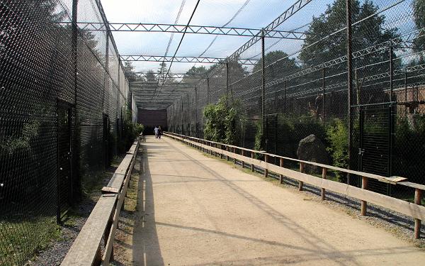 Zcela jinou kapitolou jsou voliéry pro dravce. Je vidět, že nový majitel zoo je upřednostňuje před ostatními druhy ptáků. (Foto: Jan Potůček, Ararauna.cz)