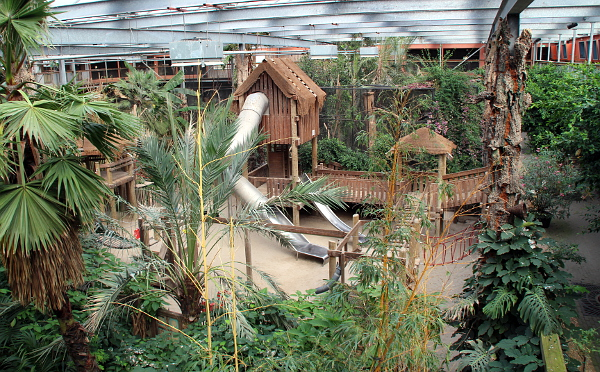 Obraz apokalypsy: o tropický pavilon se noví majitelé Zoo Veldhoven vůbec nezvládají starat (Foto: Jan Potůček, Ararauna.cz)