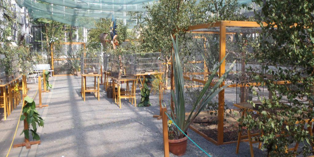 77. ročník výstavy v Botanické zahradě v Praze