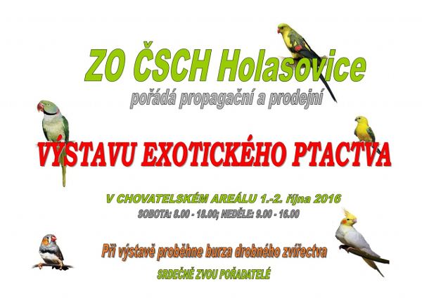 Holasovice 2016