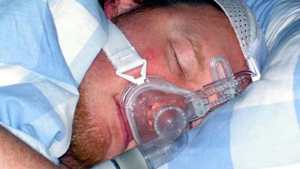 """Britský chovatel papoušků skončil s """"chřipkou"""" v nemocnici, tam mu zjistili psitakózu"""