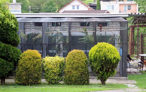 Chovné zařízení Ľuboše Pavlecha pro středně velké australské papoušky (Foto: Jan Potůček, Ararauna.cz)