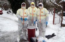 Ptačí chřipka nepolevuje, třicáté ohnisko nákazy v Česku je na Karvinsku
