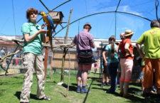Biopark Štít u Chlumce nad Cidlinou vyzkoušel průchozí voliéru s ary, kakadu, žaky i amazoňany