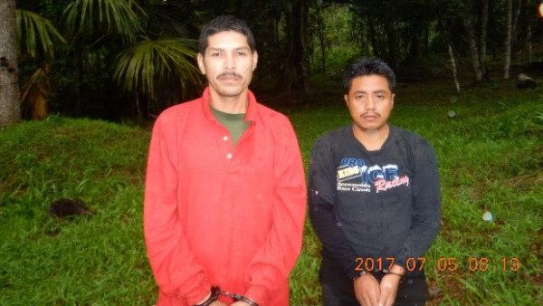 Guatemalské úřady zadržely dva pytláky, kteří vybírali z hnízd ary arakangy
