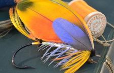 Rybář shání papouščí peří na výrobu speciálních mušek na chytání lososů