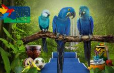 Singapurský Jurong Bird Park vrátil po čtyřech letech ary škraboškové i kobaltové