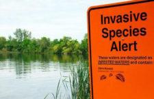 Zákaz chovu invazních druhů začne platit i v Česku, ministerstvo chystá novelu zákona