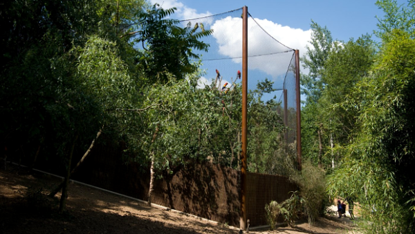 Zoo Zlín otevřela největší průchozí voliéru pro papoušky v Česku, je dlouhá 42 metrů