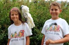 Papouščí a paví peří pomáhalo na Krásném: výnos z jejich prodeje pomůže papouškům v nouzi