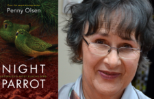 Ostrý spor o papoušky noční: kontroverzní kniha zpochybňuje okolnosti jejich objevu i další pozorování