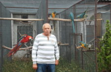 Co nového u Zdeňka Špalka? Na návštěvě u známého chovatele arů po šesti letech