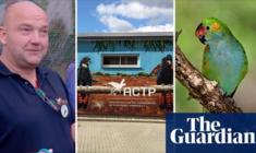 Australský Guardian obvinil ACTP z obchodování s ohroženými druhy papoušků