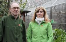 Chystáme ještě expozice pro kakaduy, australské a africké papoušky, říkají majitelé Papouščí zoo Bošovice