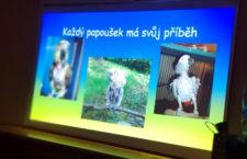 Dvůr Králové nad Labem hostil Setkání papouškářů, přednášet přijel i František Brzák