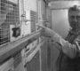 Zemřel Jan Nedělník, největší chovatel amazoňanů v Evropě