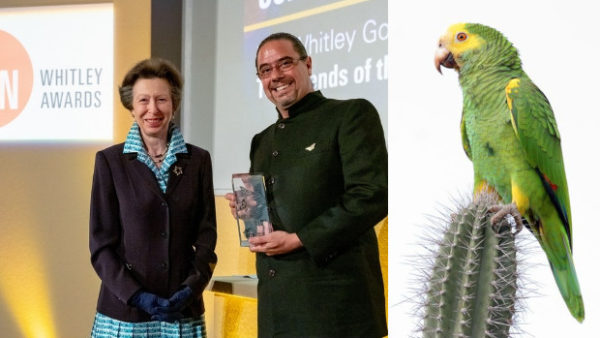 """Venezuelský přírodovědec dostal """"Zeleného Oscara"""" za záchranu amazoňana žlutoramenného"""