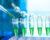 Vakcína proti PBFD je na světě, čeká už jen na registraci. Získat by ji měla do roku 2021