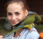 Papouščí den na Krásném propršel, přesto přijelo 158 exotů: od ary hyacintového po holuba Emila