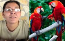 Koordinátorku záchranného projektu arů arakang v mexickém Chiapasu zavraždili