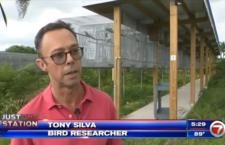 Zloději vykradli papouščí farmu Tonyho Silvy na Floridě. Jednoho se podařilo chytit