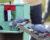 Vycvičení papoušci žako a vrány uklízejí v Abú Dhabí odpadky, mají k tomu motivovat i lidi