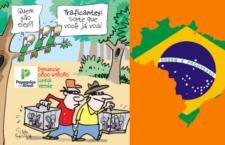 Brazílie zpřísňuje boj proti pytlákům, kteří vybírají mláďata papoušků z hnízd