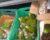 Největší pašerák zvířat v Brazílii stráví 18 let za mřížemi. Měl jich prodat na 370 tisíc
