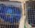 Další případ pašování arů hyacintových v Indii: šest papoušků odhalili v kamionu u hranic s Barmou