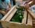 Další chycený pašerák papoušků v Brazílii: autem převážel 165 mláďat amazoňanů modročelých