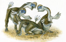 Nový druh bezzubého dinosaura připomínal přerostlého papouška s dvěma prsty na křídlech