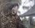 Farmáři zachránili poraněnou samici kakaua havraního. Přišla o křídlo, ale stala se maskotem Zoo Adelaide