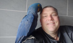 10x o papoušcích s chovatelem Martinem Voborníkem