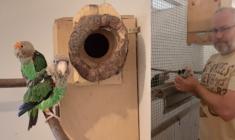 10x o papoušcích s chovatelem Milanem Hlinkou