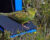 Riskantní pokus, jak zachránit papoušky zemní západní: sedm jich odchytili a přemístili 600 km jinam